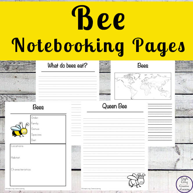 Bee Notebooking Pages