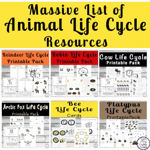 Kids will love learning about the life cycles of different animals with this massive list of animal life cycle resources.