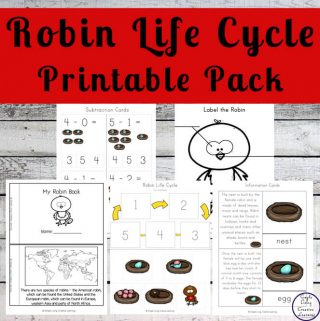 Through completing this Robin Life Cycle Printable Pack, children will learn more about these beautiful birds and their happy songs.