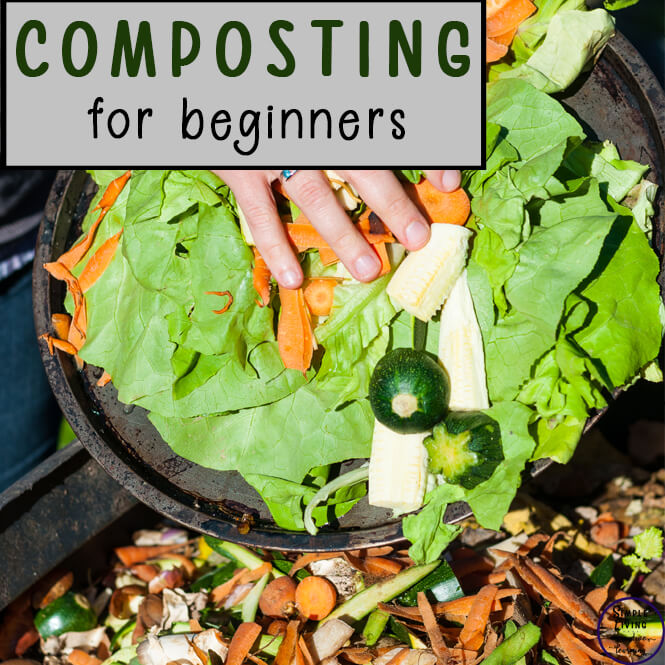 A great way to help reduce greenhouse gases is to start composting waste products. Learn how to start composting and great methods for maintaining it to have a great fertiliser for your garden.