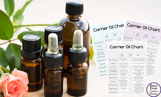 What are Carrier Oils and how do you use them? - Simple Living