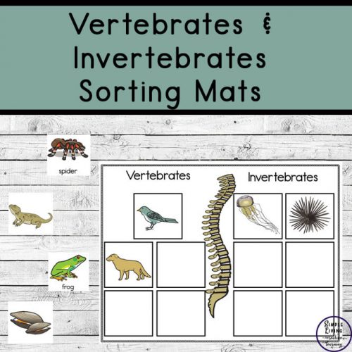 These Vertebrates and Invertebrates sorting mats are the perfect way for toddlers, kindergarteners and preschoolers to practice recognizing simple animal classification and sorting at the same time!
