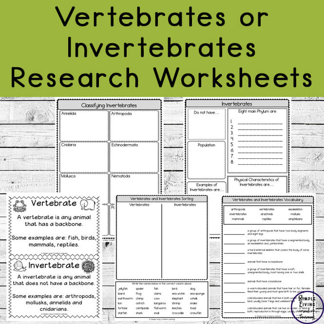 Learning about the differences between Vertebrates and Invertebrates is fun and easy with these research worksheets.