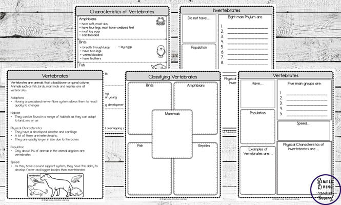 Vertebrates And Invertebrates Research Worksheets Simple