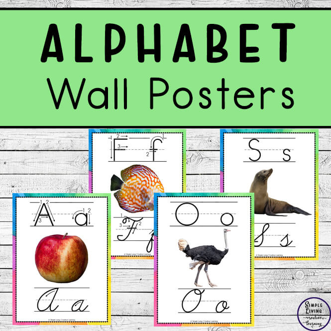 These gorgeous Alphabet Wall Posters with real photos, come in two sizes, a whole page and half page size.
