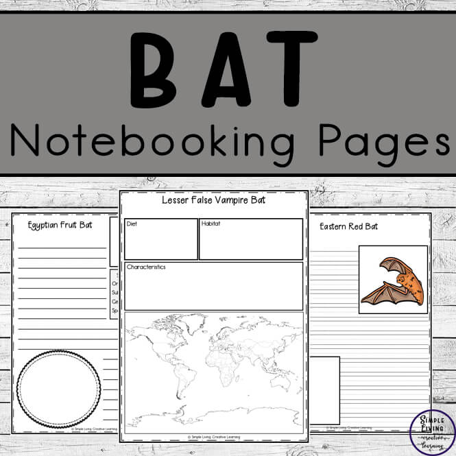 To learn more about tbats, these Bat Notebooking Pages cover 16 different types of bats and are a wonderful way to record your research.
