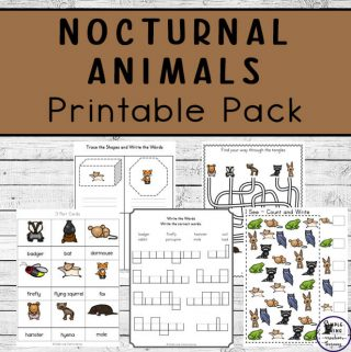 This Nocturnal Animals Printable Pack is a great way to teach children about animals that are awake at night while working on their math & literacy skills.