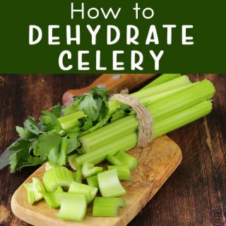 Learn how to dehydrate celery to always have on hand to use in soups, stocks and savoury dishes. Here are some great tips on how to dehydrate celery.