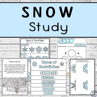 Enjoy learning about Snow, and the Snow Cycle with this awesome Snow Study that includes worksheets and a flip book about different types of snowflakes.