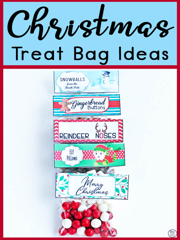 These five Christmas Treat Bag Ideas are simple and easy to make, yet great fun ideas that are perfect to give out during the festive season.