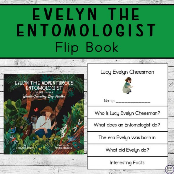 Evelyn the Entomologist book and flip book.