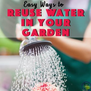 reusing water to water garden