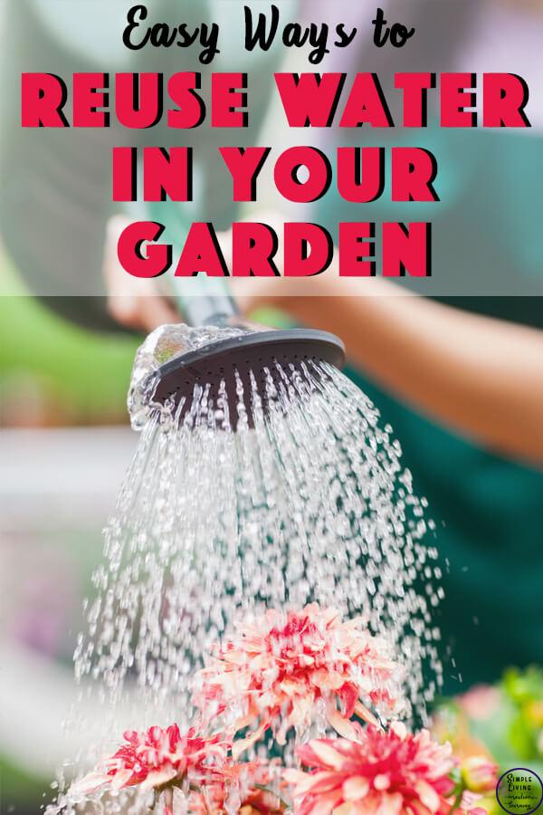 reusing water to water garden