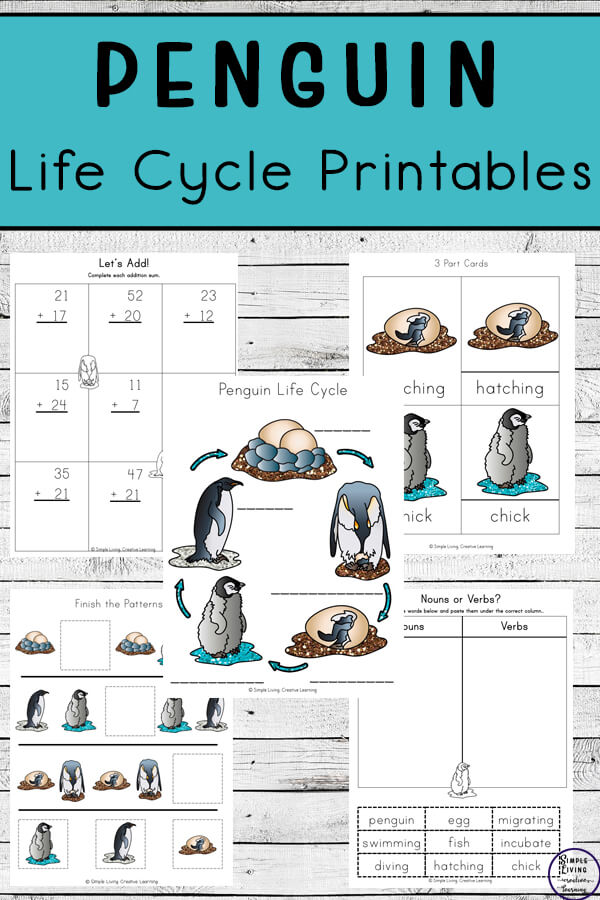 penguin life cycle printables