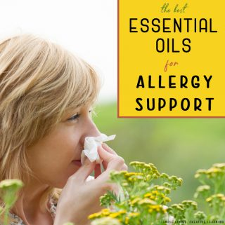 Essential Oil Blends for Allergy Support