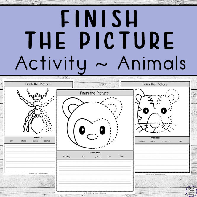 Finish the Pictures ~ Animals