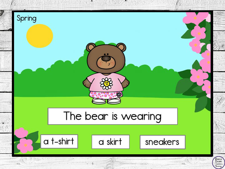 Seasonal Animals Outfits Activity