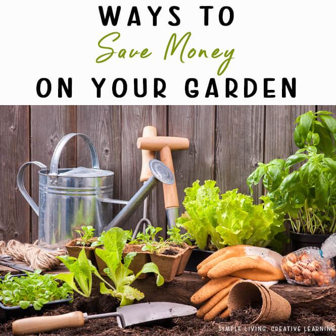 Ways to Save Money on your Garden