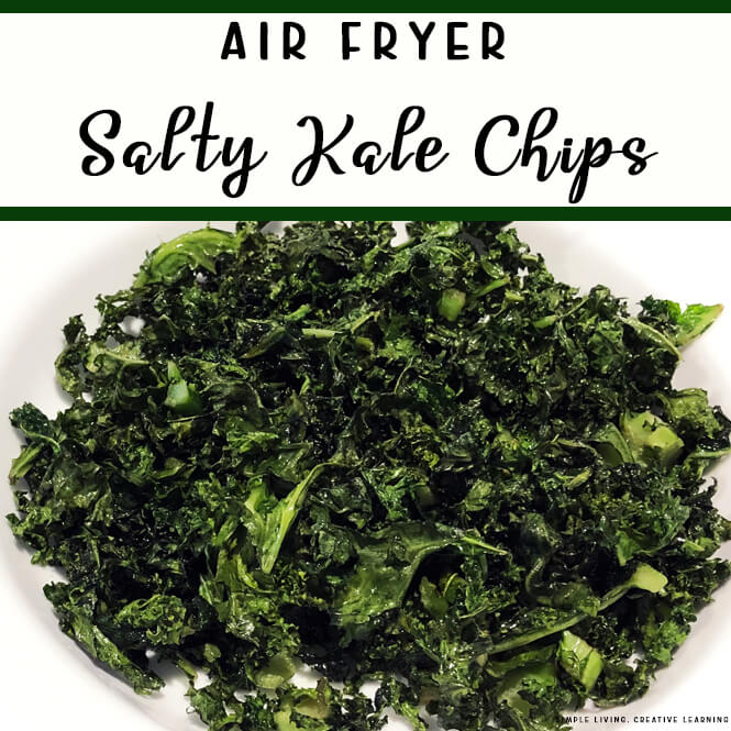 Air Fryer Salty Kale Chips