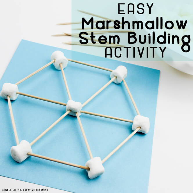Marshmallow Stem Building Activity