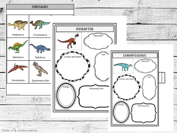 Dinosaur Research Flip Book