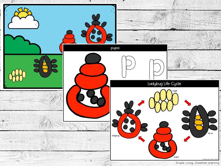 Ladybug Life Cycle Playdough Mats