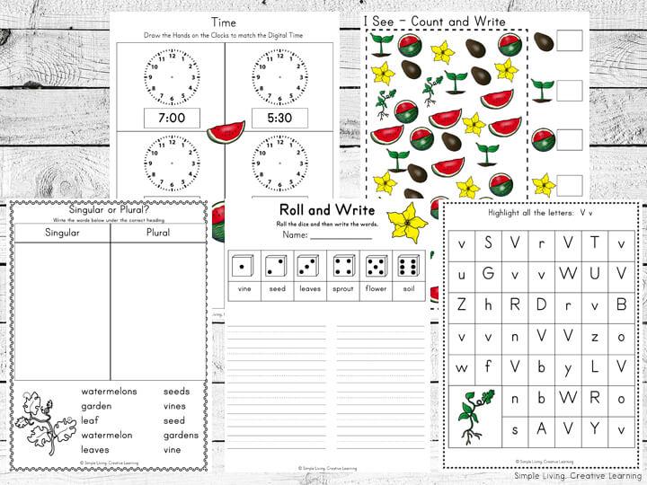 Watermelon Life Cycle Printables