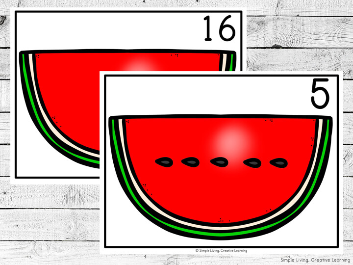 Watermelon Seed Counting Mats