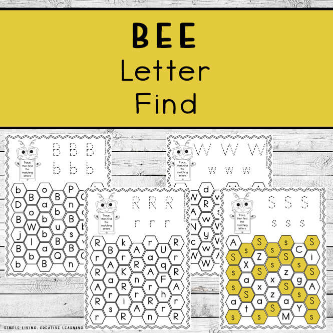 Bee Letter Find