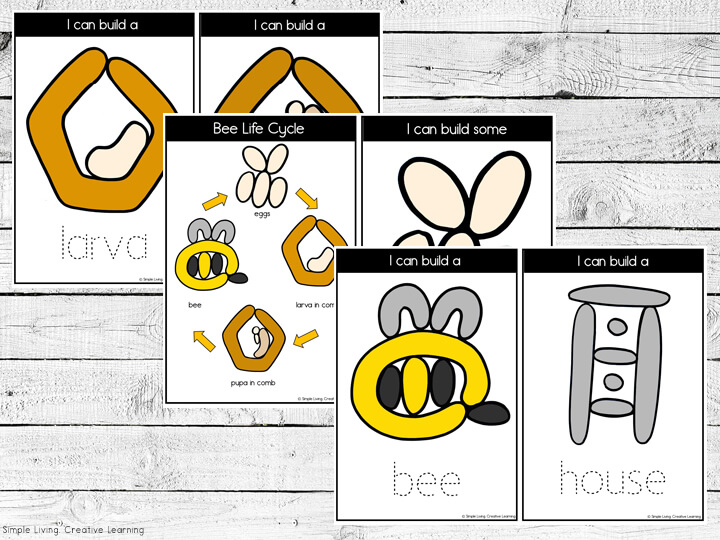 Bee Life Cycle Playdough Mats