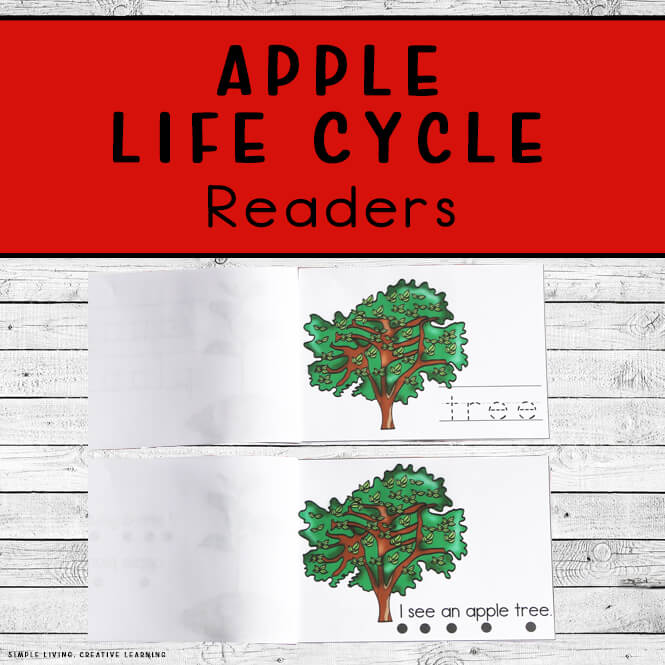 Apple Life Cycle Readers
