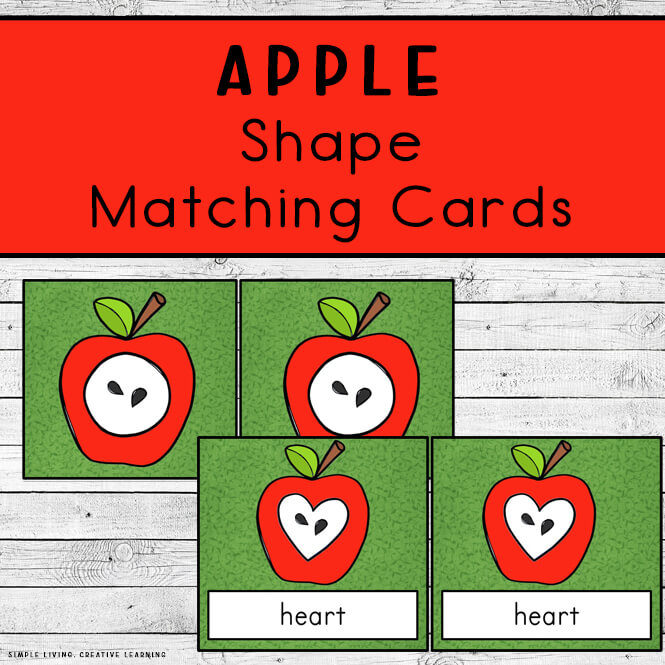 2D Apple Shape Matching Cards