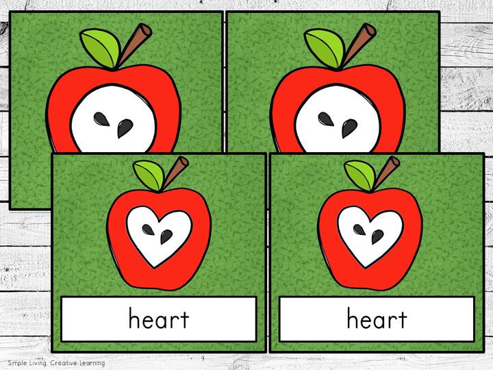2D Apple Shape Matching Cards
