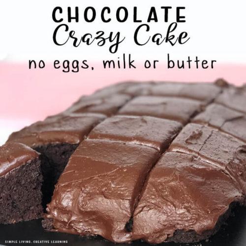 Crazy Chocolate Cake