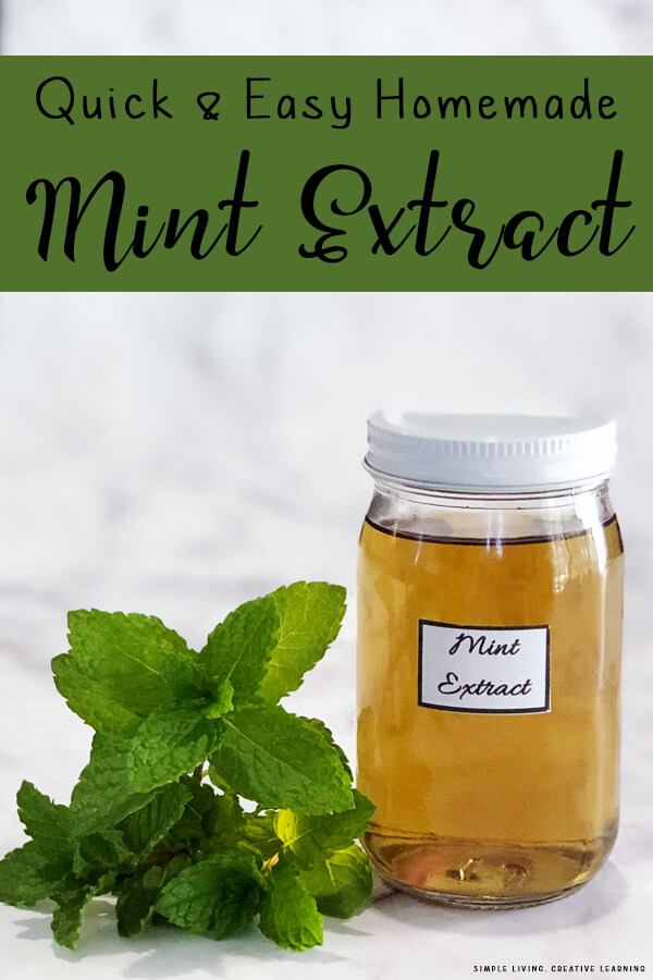 How to Make Homemade Mint Extract