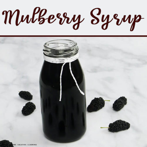 How to Make Mulberry Syrup