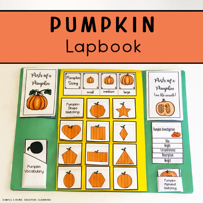 Pumpkin Life Cycle Lapbook