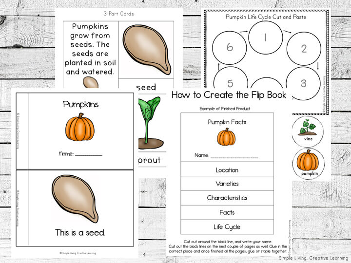 Pumpkin Printable Pack