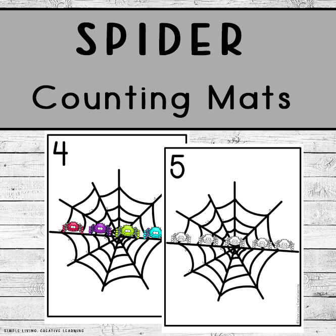 Spider Counting Mats