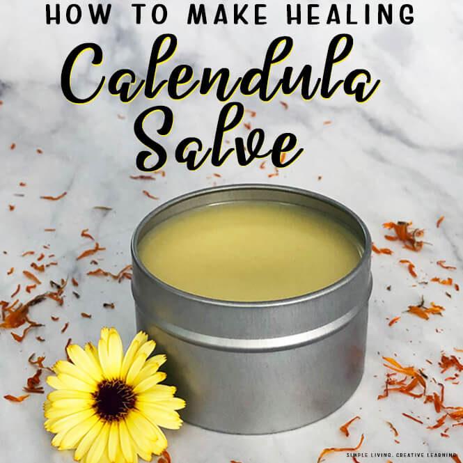 How to make Healing Calendula Salve