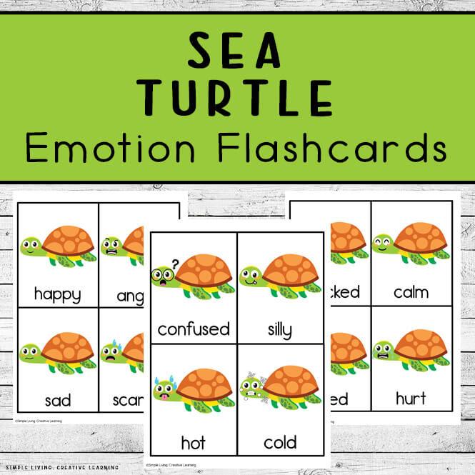 Sea Turtle Emotion Flashcards