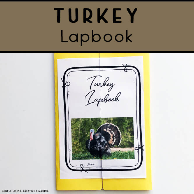 Turkey Lapbook