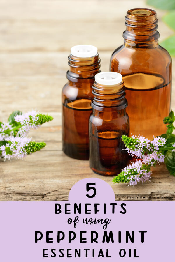 5 Benefits of Using Peppermint Essential Oil
