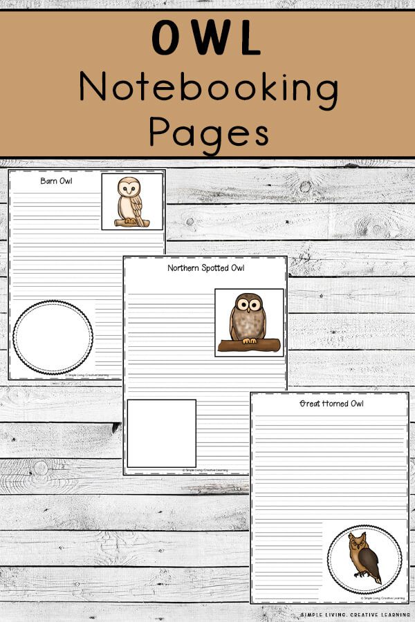Owl Notebooking Pages