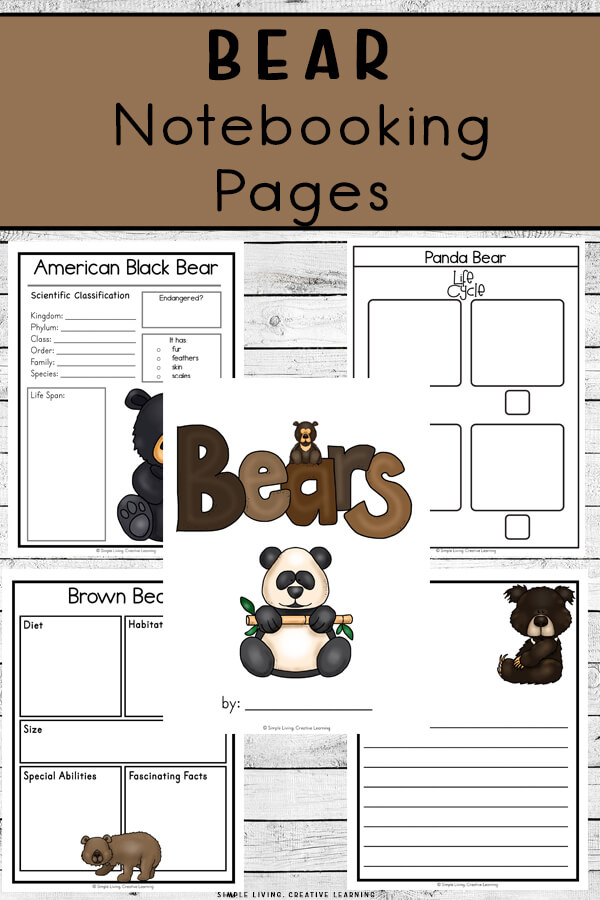 Bear Notebooking Pages
