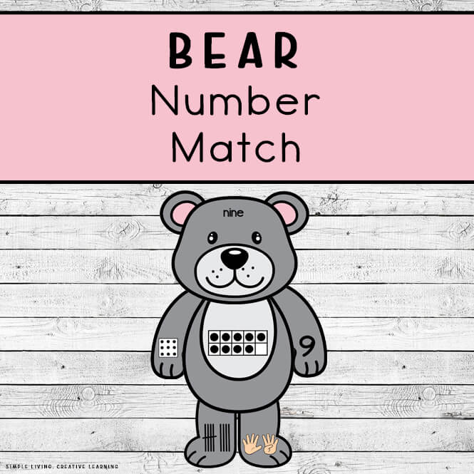 Bear Number Match