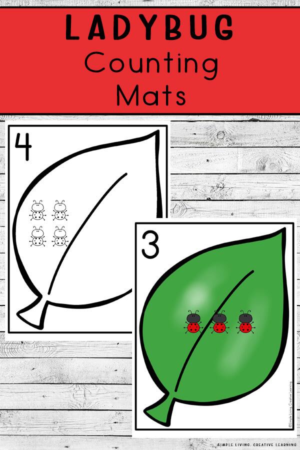 Ladybug Counting Mats