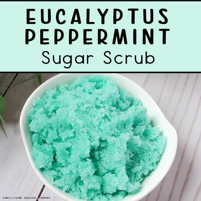 Eucalyptus Peppermint Sugar Scrub