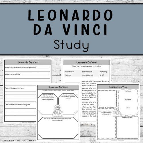 Leonardo Da Vinci Study