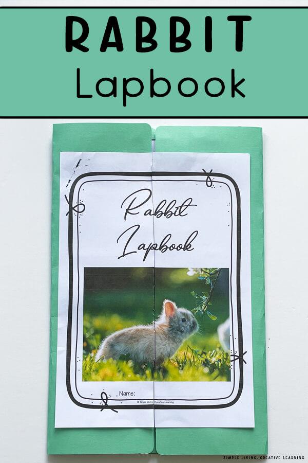 Rabbit Lapbook